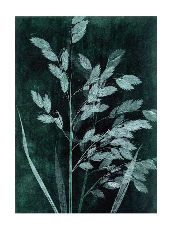 Olivengrøn Pernille Folcarelli