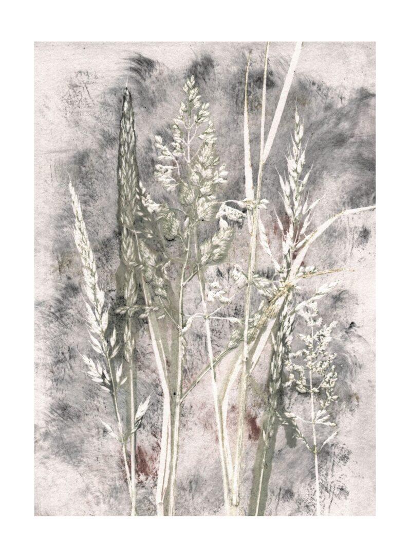 Grass haze kunsttryk