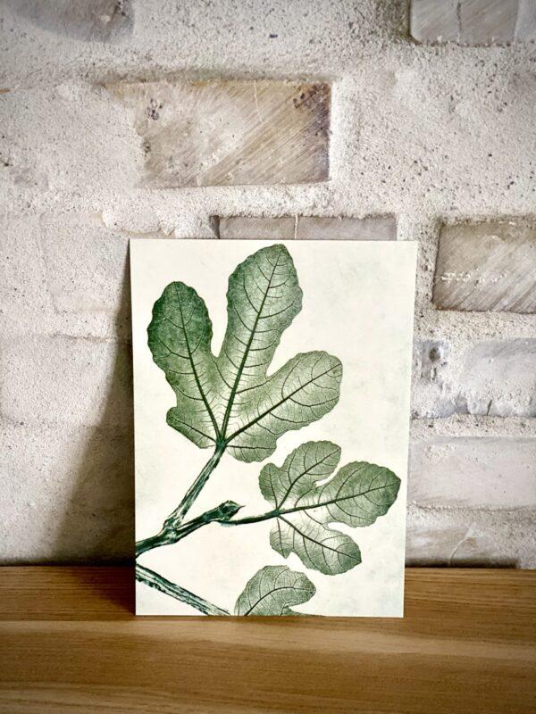FIG GREEN Pernille Folcarelli