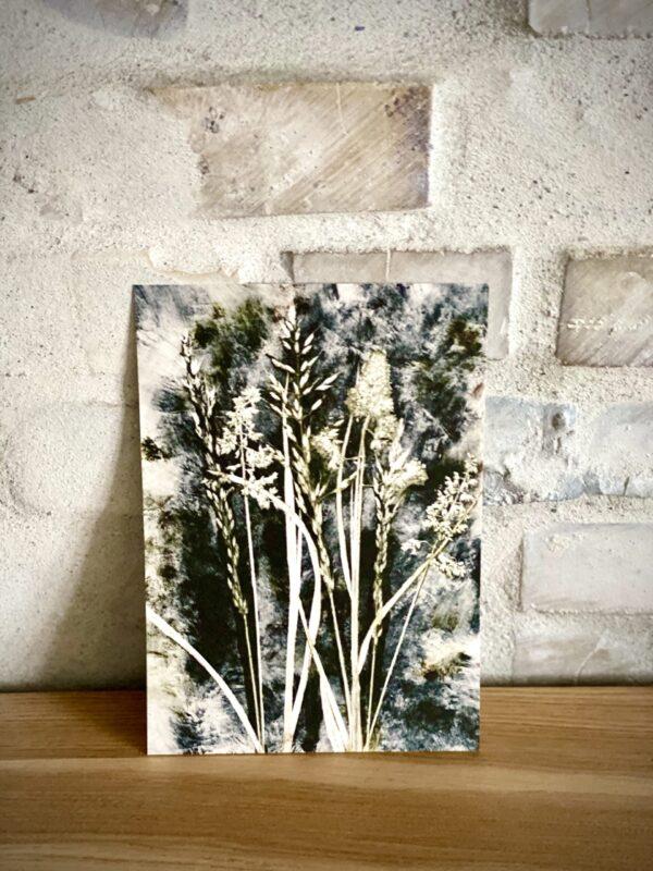Kunstkort Pernille Folcarelli